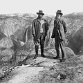 Roosevelt & Muir by Granger
