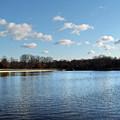 Roosevelt Lake by Frank Nicolato