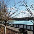 Roosevelt Lake Promenade by Frank Nicolato
