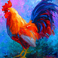 Rooster Bob by Marion Rose