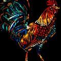rooster  Gallo Giro by Americo Salazar