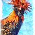 Rooster by Janet Nielsen