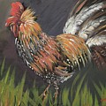 Rooster - Moby - Chicken by Jan Dappen