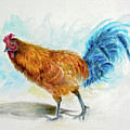 Rooster Watercolor by Liza Gonen