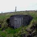 Root Cellar Near A Road by Barbara Griffin