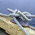 Rope And Bollard by Barbara Griffin