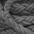 Rope I by Henri Irizarri