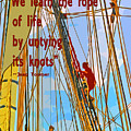 Rope Of Life by Jost Houk