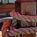 Rope On Wood by Scott McKone