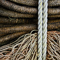 Ropes And Fishing Nets by Carol Leigh