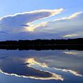 Rorschach Reflection by Rick Rauzi