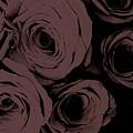Rosa D'amore Deep Mauve by Virginia Hall