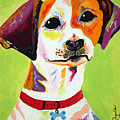 Roscoe The Jack Russell Terrier by Emily Reynolds Thompson
