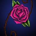 Rose 12 by David DAmbrosio