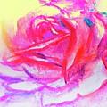 Rose 2 by Lavender Liu