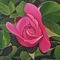 Rose Arcana by Hunter Jay