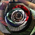 Rose - Collaged Petals by Tin Tran