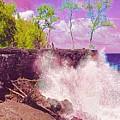 Rose Colored Splash At Mackenzie by Joalene Young