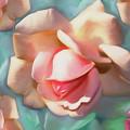 Rose Dream by Lynda Lehmann