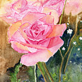 Rose Garden by Melly Terpening