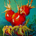 Rose Hips by Marion Rose