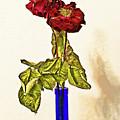 Rose In Blue Vase by Armando Picciotto