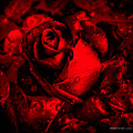 Furious Rose Magic Red by Mona Stut
