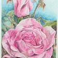 Rose by Muriel Dolemieux