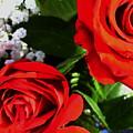Rose by Nereida Slesarchik Cedeno Wilcoxon