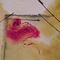 Rose by Rebecca Park