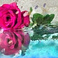 Rose Reflected Fragmented In Thick Paint by Catherine Lott