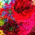Rose by Shun Todoroki