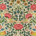 Rose by William Morris