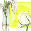 Rose by Yana Sadykova