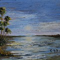 Roseate Beach by Beth Maddox
