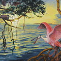Roseate Spoonbills Among The Mangroves by Dianna Willman