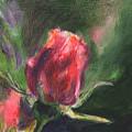 Rosebud by Anees Peterman