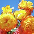 Roses Garden Summer Art Print Blue Sky Yellow Orange by Baslee Troutman