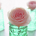 Roses In Green Jars by Terri Tiffany