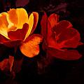 Roses In Molten Gold Art by Debra Lynch