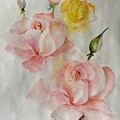 Roses Scent by Hedwig Pen