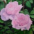 Roses by Thomas Taylor