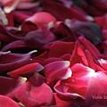 Rose Waves by Violeta Ianeva