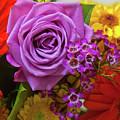 Rosy by Vijay Sharon Govender