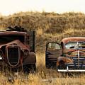 Rotting Jalopies by Todd Klassy