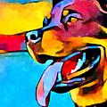 Rottweiler by Chris Butler