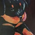 Rottweiler Puppy by Donald J Ryker III