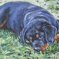 Rottweiler Puppy by Lee Ann Shepard