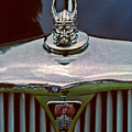 Rover Radiator And Hood Ornament by Chris Lord