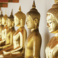 Row Of Buddhas by Anthony Totah